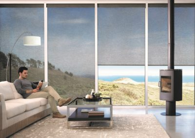 Designer roller_Living Room_Model