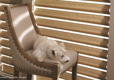 Pirouette_Fabric Detail_Dog